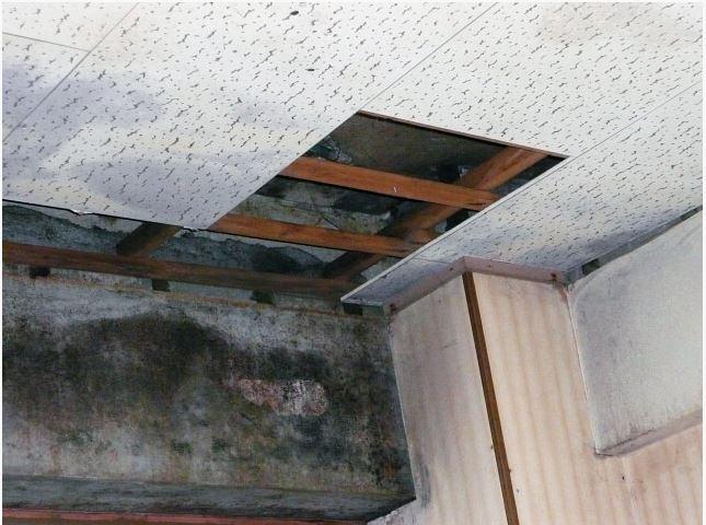chống thấm mái nhà