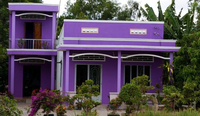 sơn nhà cấp 4 màu tím