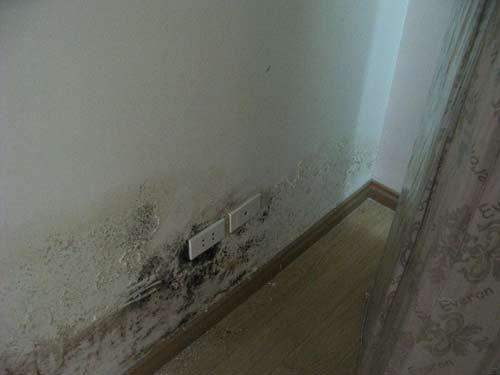 chống thấm chân tường