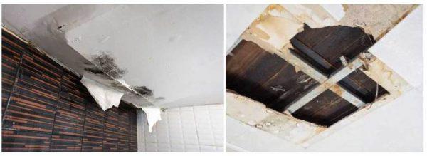 chống thấm mái nhà tại tphcm
