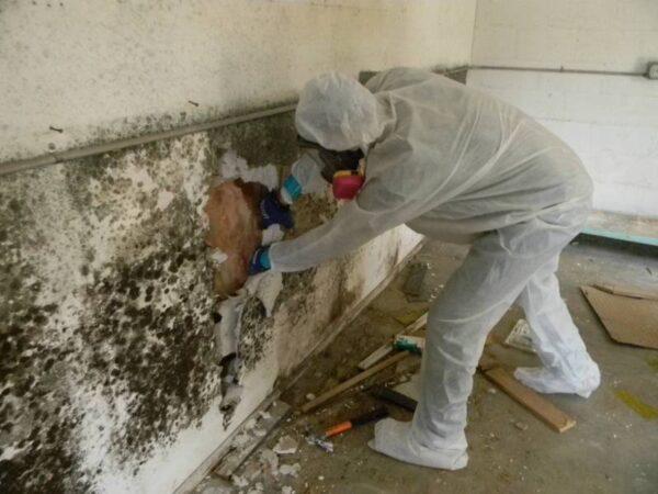 chống thấm ngược tường nhà